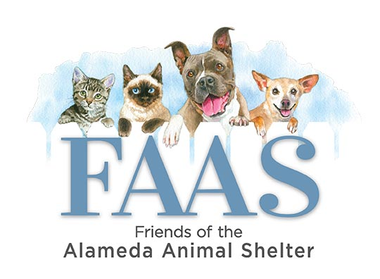 Art Supporters raise money for Friends of Alameda Animal Shelter